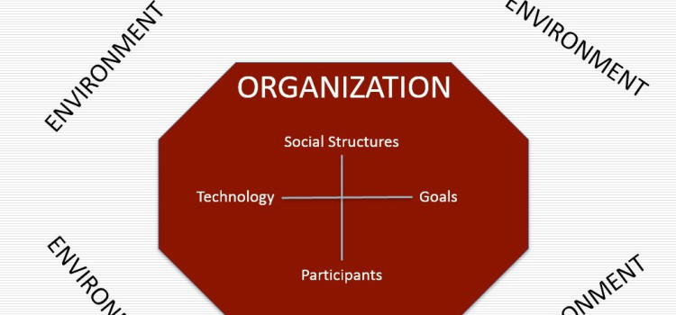 Qu'est-ce qu'une organisation ?   1 :  Composantes et décisions