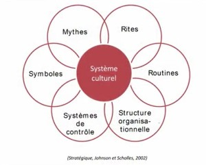 Impacts sur système culturel