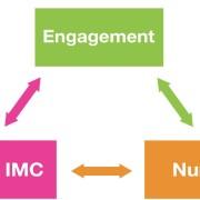 Le marketing des medias sociaux.2 : stratégies