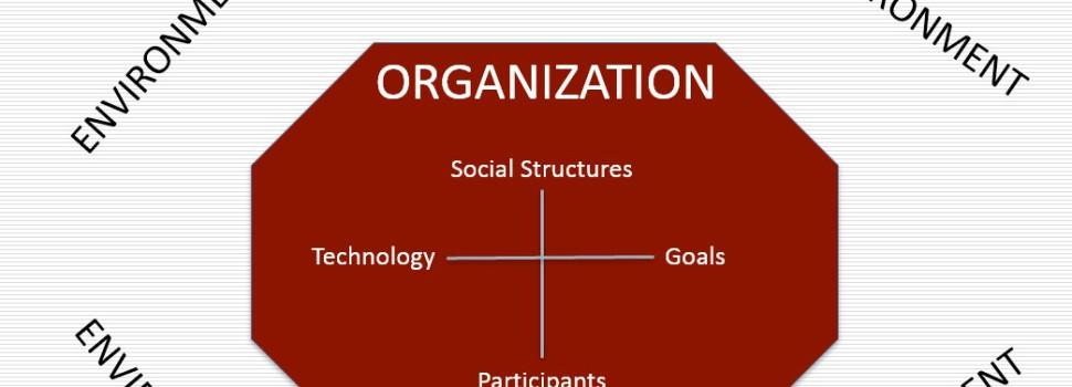Qu'est-ce qu'une organisation ?  2 : Apprentissage et culture