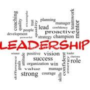 Le leader = un profil d'activités