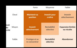 Matrice McKinsey de stratégies
