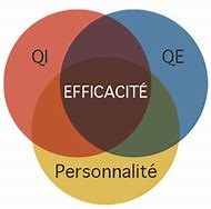 Emotions et intelligence émotionnelle au travail .2