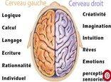 «Cerveau total»nécessaire selon Accenture